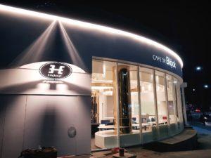 hdac ico review by hundai